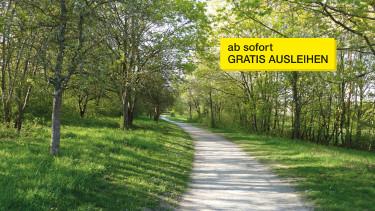 Weg zwischen Bäumen © funnyhill, stock.adobe.com