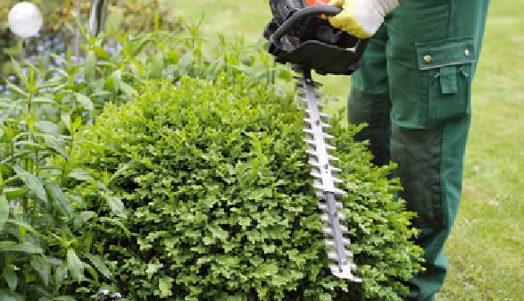 Bekommen Sie Unterstützung bei der Gartenarbeit, dann bezahlen Sie Ihre Helfer mit Dienstleistungsschecks! © M&S Fotodesign, Fotolia.com