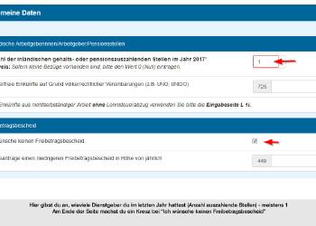 Gib die Anzahl der Beschäftigungsverhältnisse an © Screenshot FinanzOnline