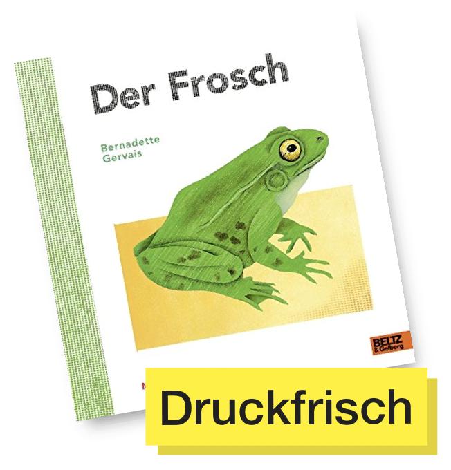 Der Frosch © Beltz & Gelberg