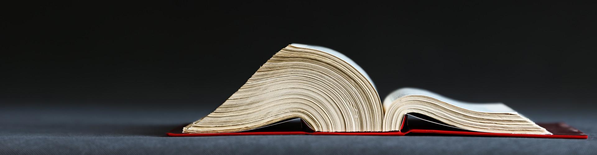 aufgeschlagenes Buch © Ingo Bartussek, Adobe Stock